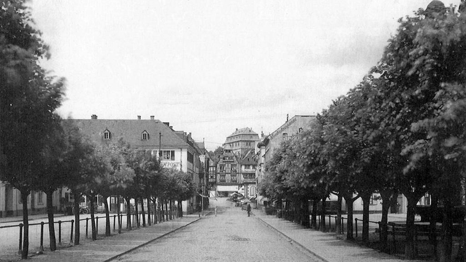 So sah der Neumarkt um 1900 aus: Zwei Baumreihen bildeten eine Allee. Foto: Aus Entwurf von Mann Landschaftsarchitektur.