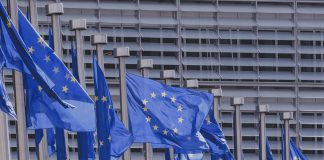 In Straßburg wehen die EU-Flaggen! Europawahl 2019: Am 26. Mai können Sie wählen. | Neues Limburg