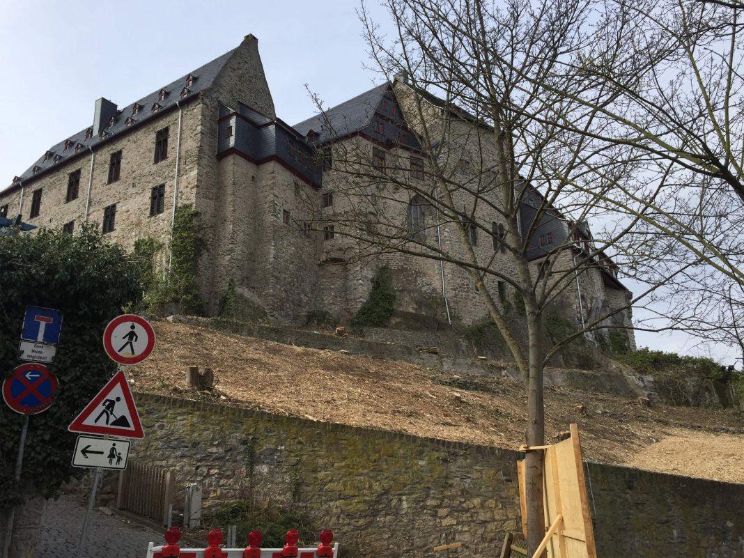 So sah der Schlossgarten in Limburg nach der Rodung am 2. April aus. © Luís Matos